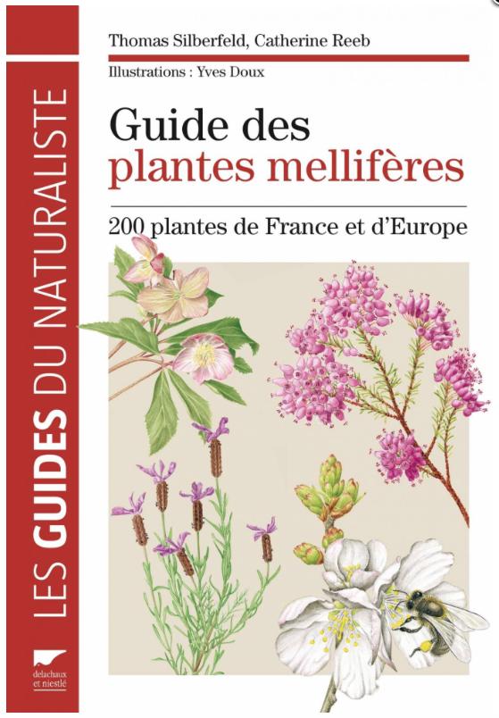 Guide Des Plantes Mellif Res Asapistra